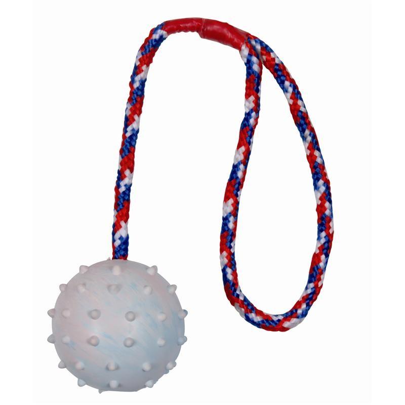Ball am Seil ø 6 cm 30 cm Hundespielzeug Trixie 3305