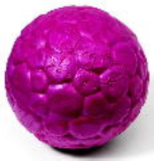 West Paw ZOGOFLEX AIR BOZ LARGE * Currant - 10cm Hundespielzeug Ball