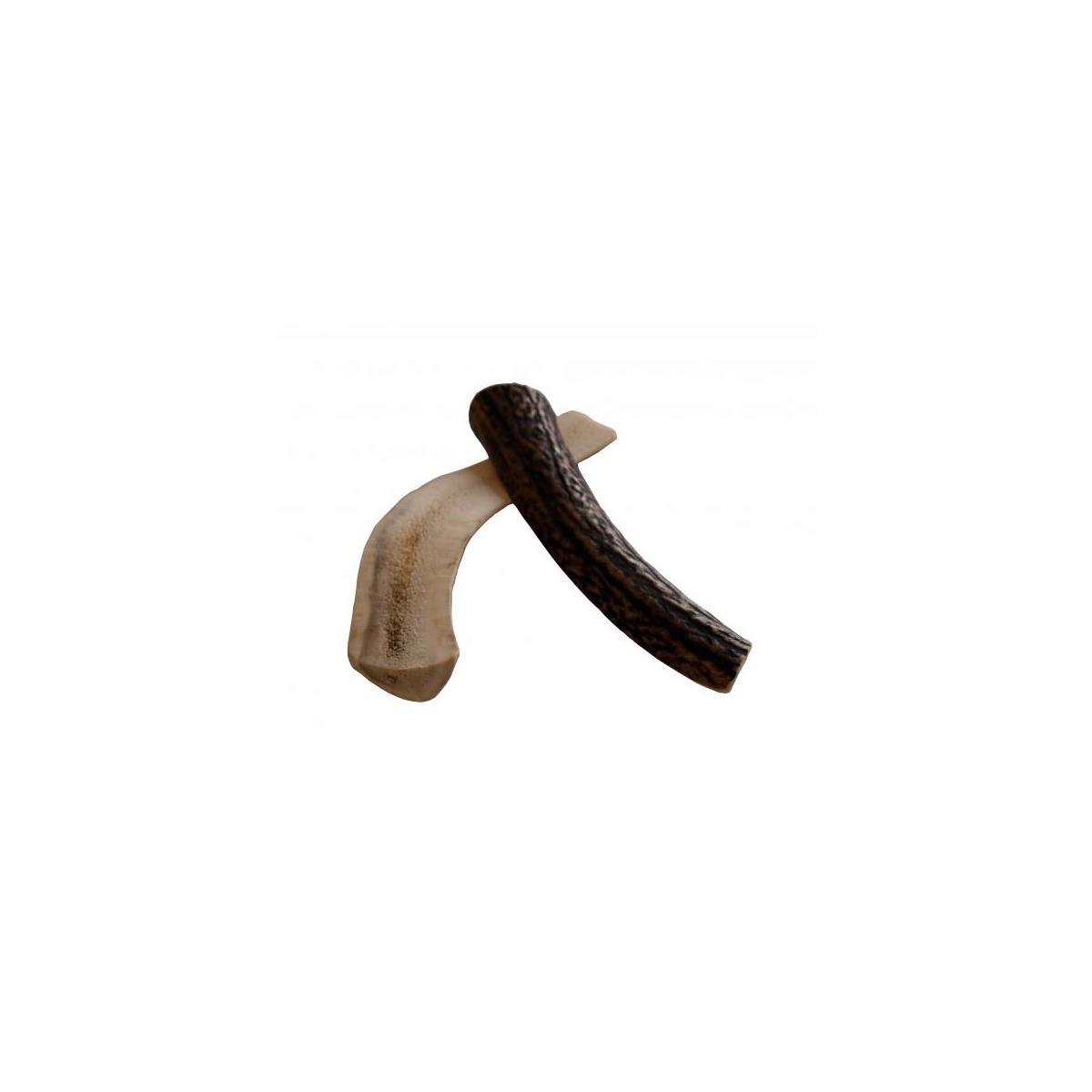 Chewies Geweih-Snack Halb M Kausnack Abwurfstangen Zahnpflege