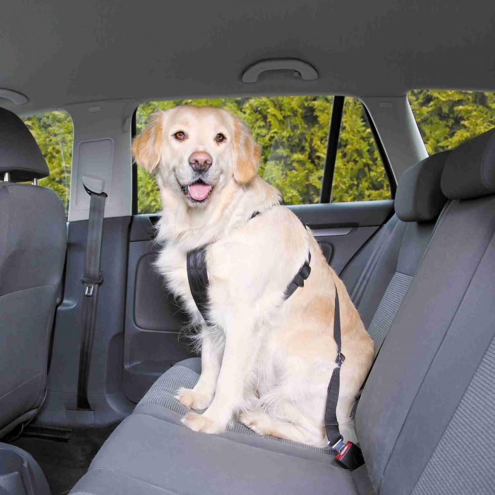 Trixie Dog Auto-Sicherheitsgeschirr Größe M 50 bis 70 cm schwarz 1291