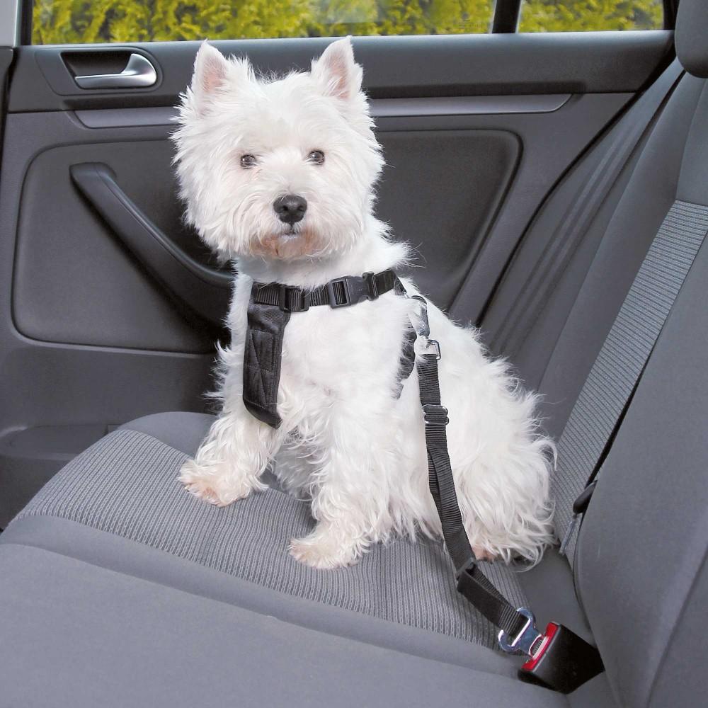 Trixie Dog Auto-Sicherheitsgeschirr Größe S 30 bis 60 cm schwarz 1290